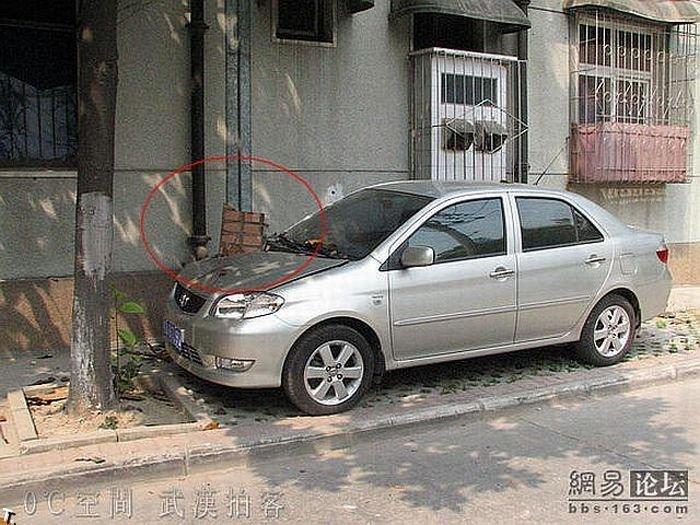 Не там припарковался (5 фото)