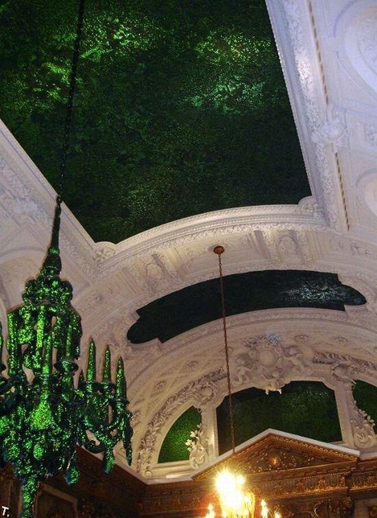 Потолок из жуков (6 фото)