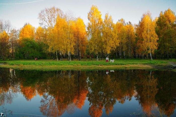 Красота осени (42 фото)