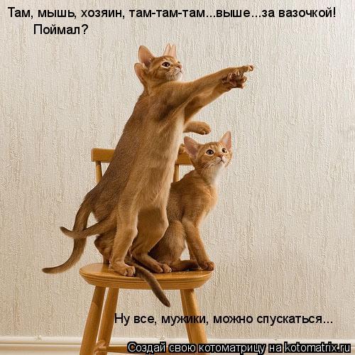 http://de.trinixy.ru/pics4/20090904/kotomatrix_15.jpg