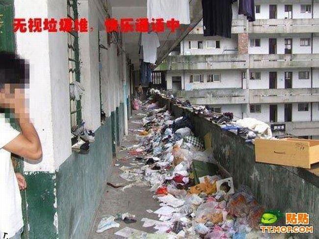 Самая грязная общага в мире (8 фото)