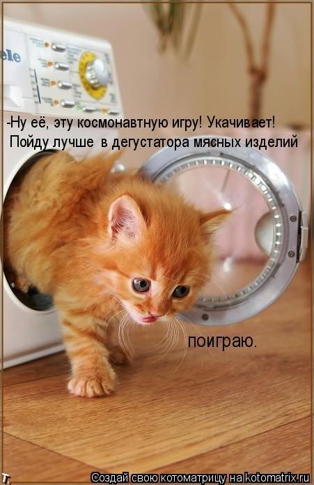 http://trinixy.ru/pics4/20090921/kotomatrix_05.jpg