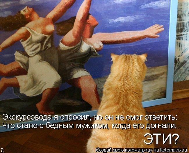 http://trinixy.ru/pics4/20090921/kotomatrix_45.jpg