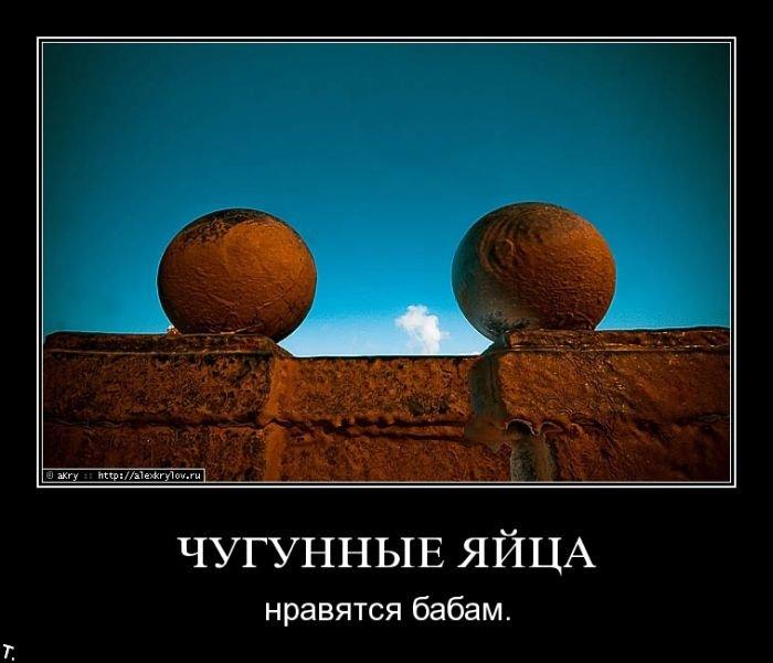 Демотиваторы (157 фото)