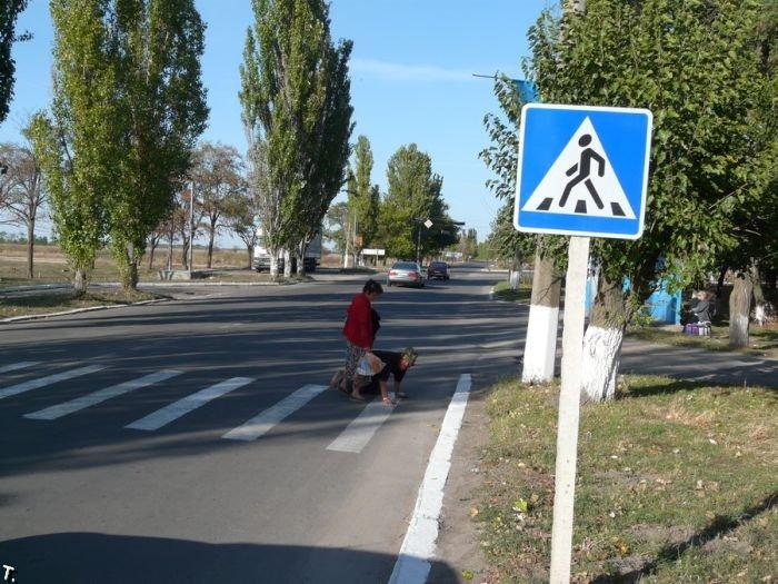Переход дороги (4 фото)