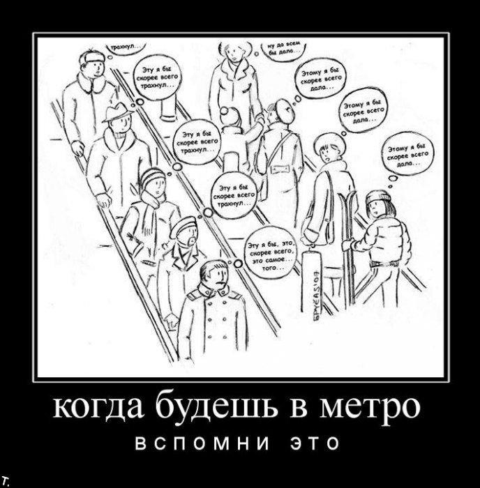 Демотиваторы (132 картинки)