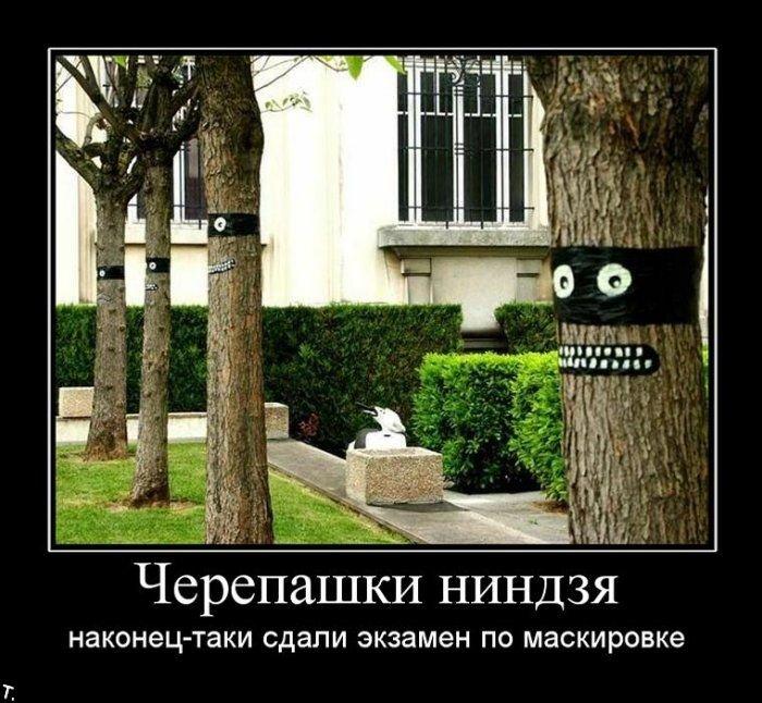 Демотиваторы (149 фото)