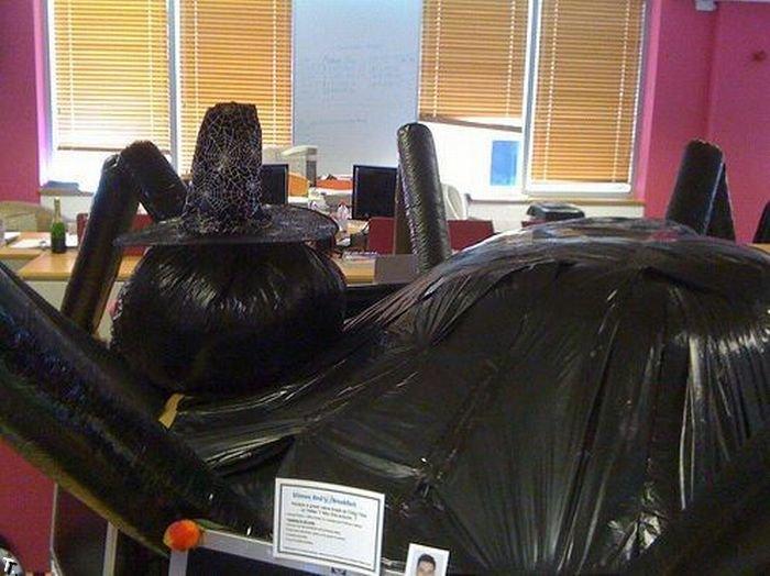 Девайс в офисе на Halloween (5 фото)