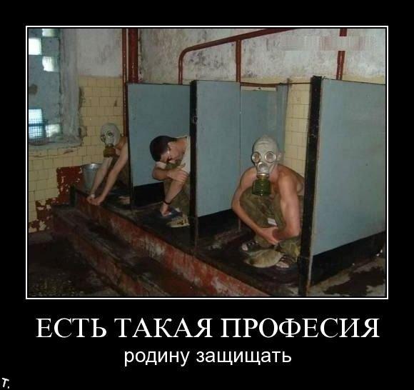 Демотиваторы (146 фото)