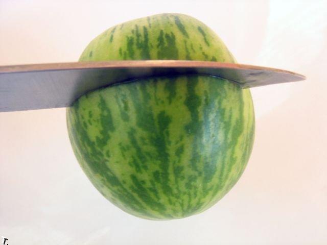 Крошечный арбуз (3 фото)