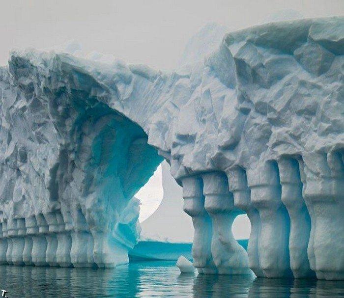 Красота айсбергов (110 фото)
