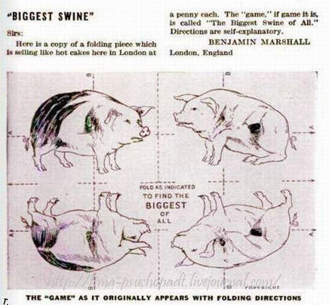 Самая большая свинья в мире (3 фото)