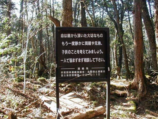 Аокигахара - лес самоубийств в Японии