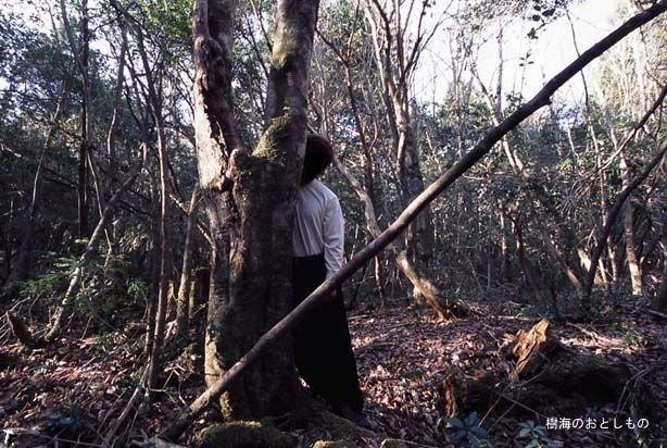 Жесть дня. Аокигахара - лес самоубийств в Японии (19 фото)