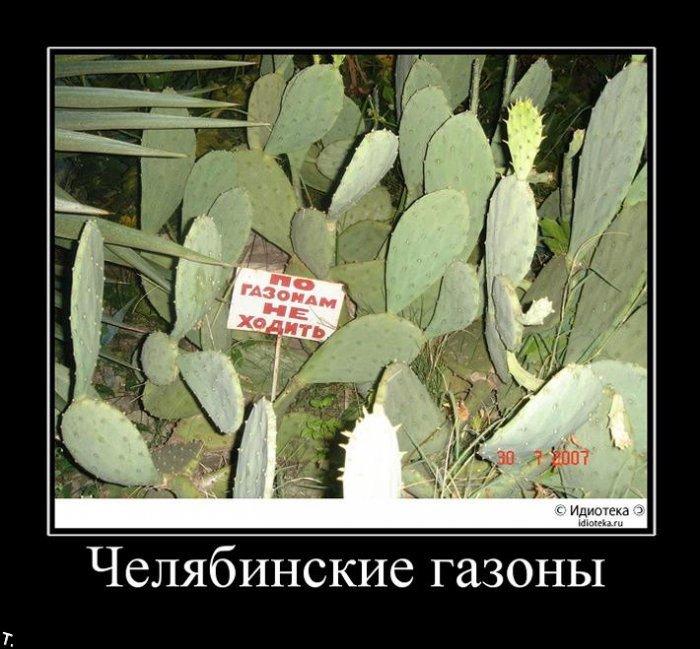 http://ru.trinixy.ru/pics4/20091030/demotivatrori_106.jpg