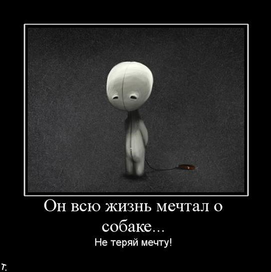 http://trinixy.ru/pics4/20091030/demotivatrori_108.jpg