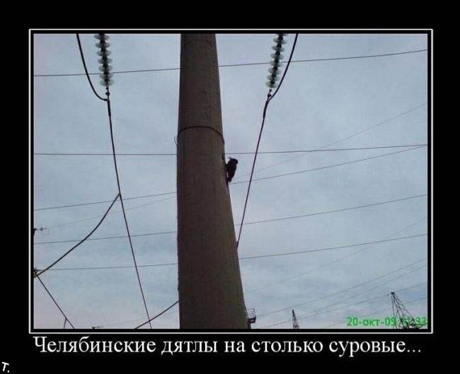 http://ru.trinixy.ru/pics4/20091030/demotivatrori_203.jpg