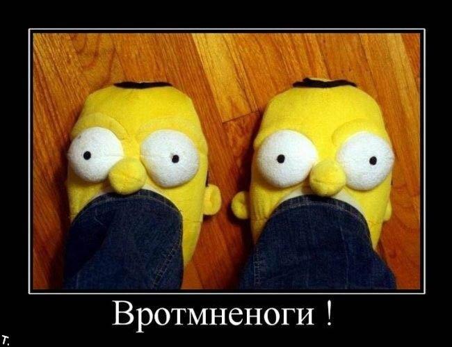 http://trinixy.ru/pics4/20091030/demotivatrori_209.jpg
