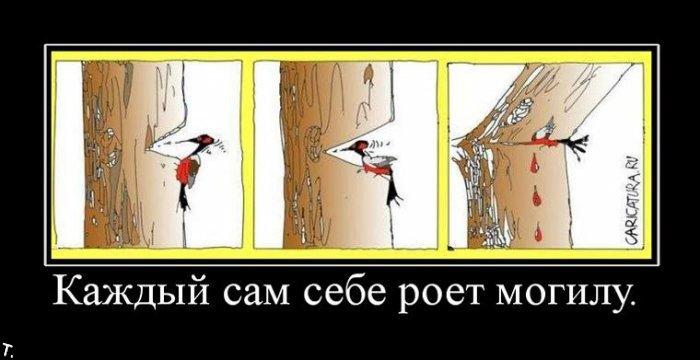 http://trinixy.ru/pics4/20091030/demotivatrori_93.jpg