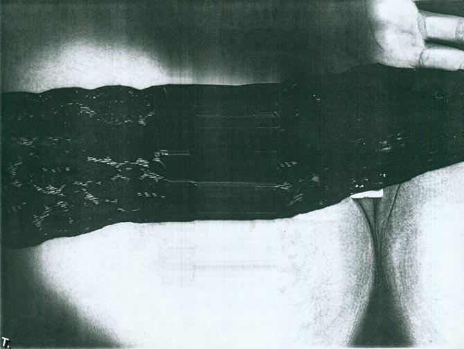 Ксерокопия жопы