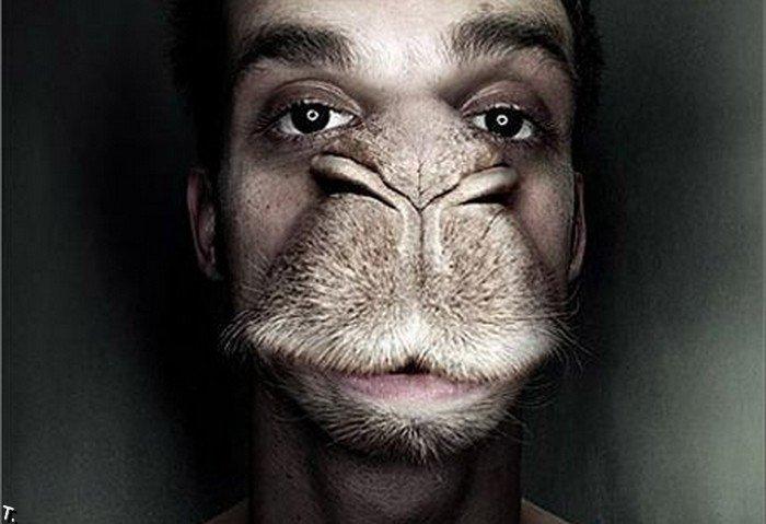 Лучшие ретушеры мира (76 фото)