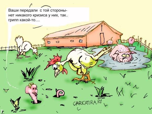 ...что птичий грипп проявляет признаки возрождения, в то время как...