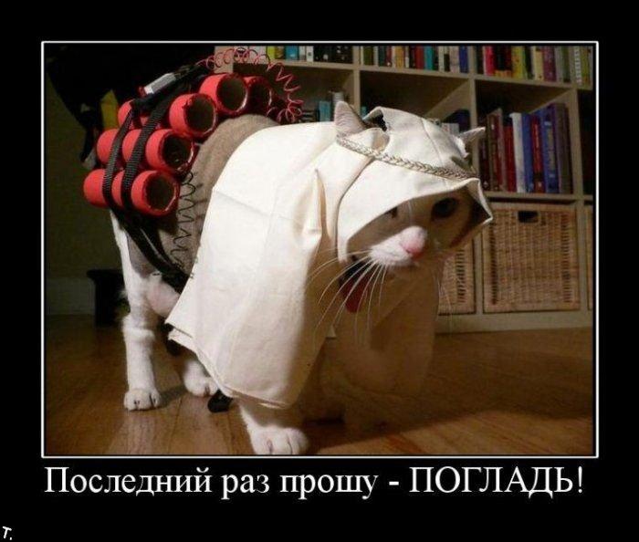 http://trinixy.ru/pics4/20091106/demotivators_nov6_05.jpg