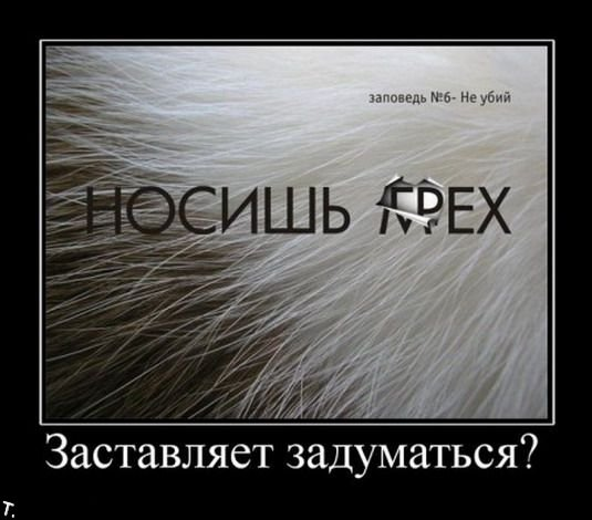 http://trinixy.ru/pics4/20091106/demotivators_nov6_164.jpg