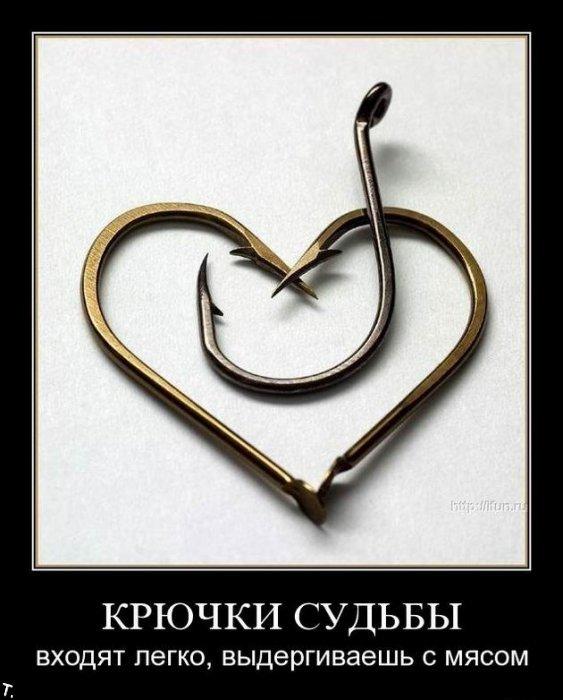 http://trinixy.ru/pics4/20091106/demotivators_nov6_56.jpg