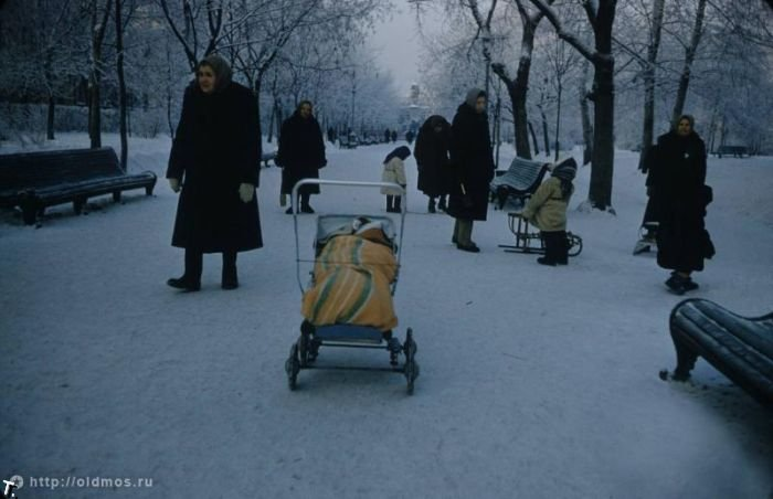 Московские зимы (42 фото)