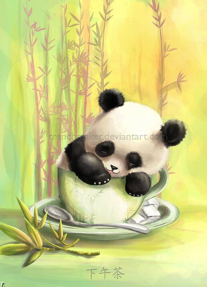 Панды рисунок смешные