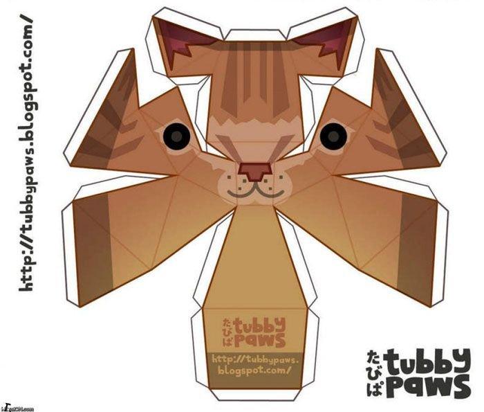 Потолочный кот (4 фото)