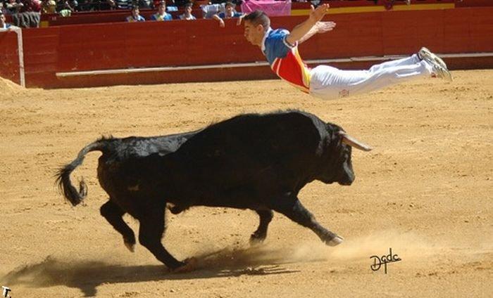 Рекортадоры Испании (36 фото)