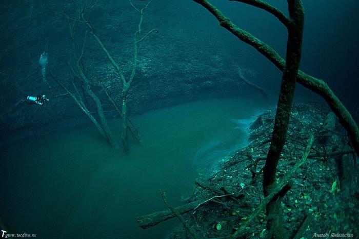 Подводная река в Мексике (4 фото + видео)