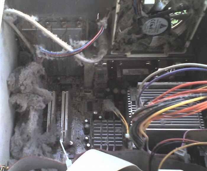 Очень грязные компьютеры (17 фото)
