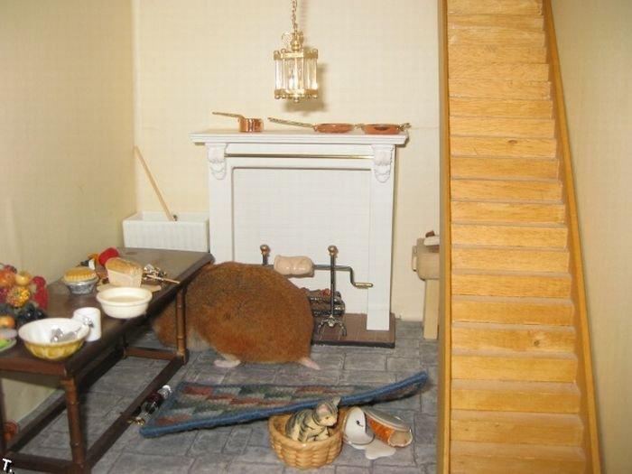 Домик для хомячка (5 фото)