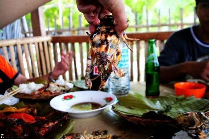 Необычные креветки (5 фото)