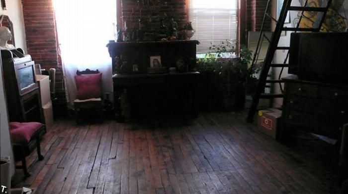Самые грязные квартиры и дома США (28 фото)