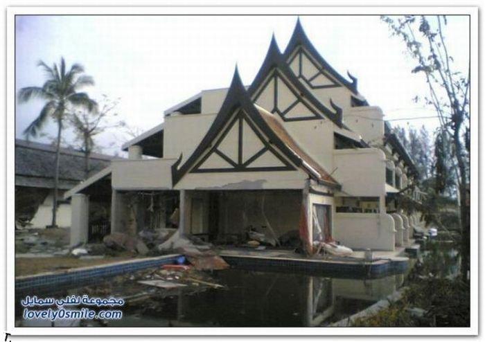 До и после цунами (29 фото)