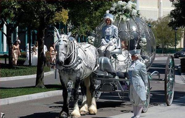 Смешные свадебные фотографии (100 фото)