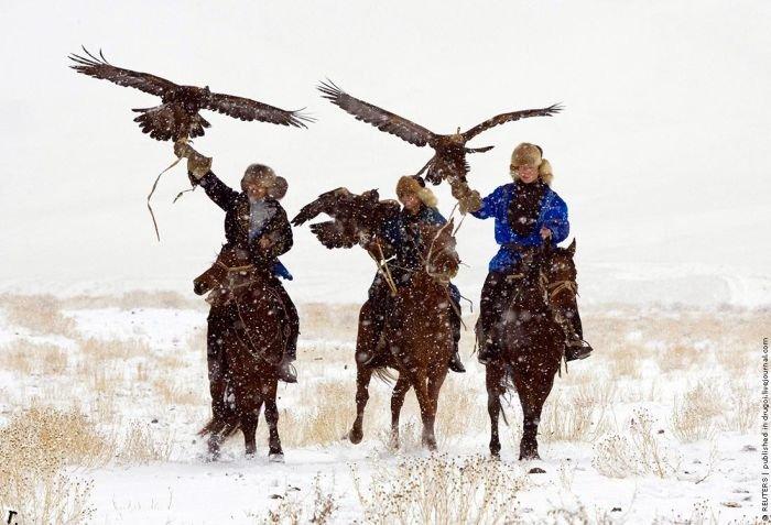 Птичья охота в Казахстане (9 фото)