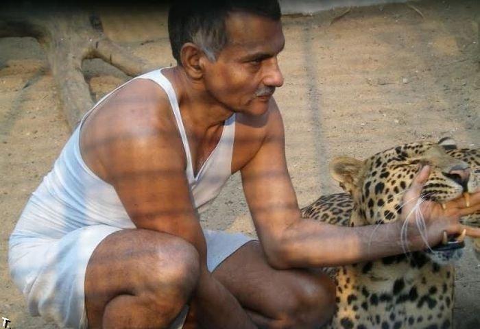 Домашний зоопарк богатого человека (10 фото)