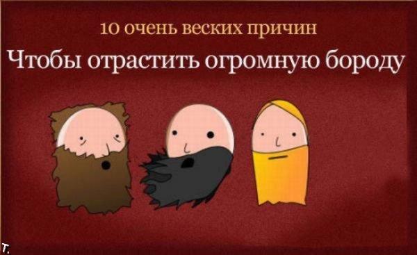 10 причин, чтобы отрастить огромную бороду (11 картинок)