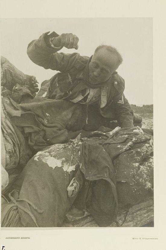 Фотографии из Сталинграда (9 фото)