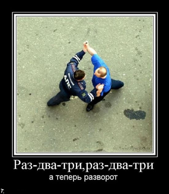 Демотиваторы (181 фото)