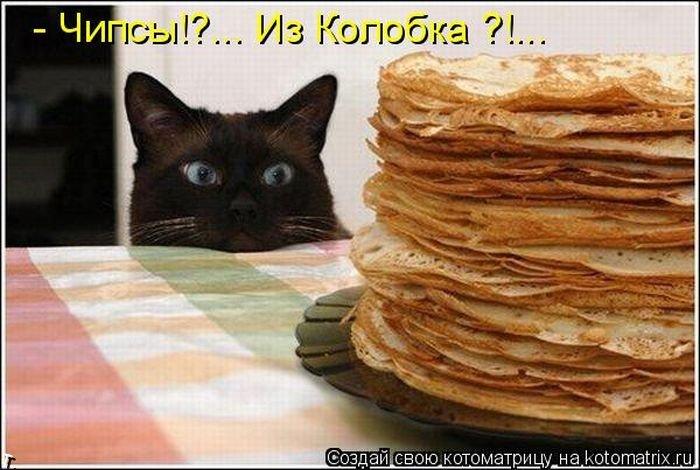 Котоматриця!)))) - Страница 2 Kotomatrix_11