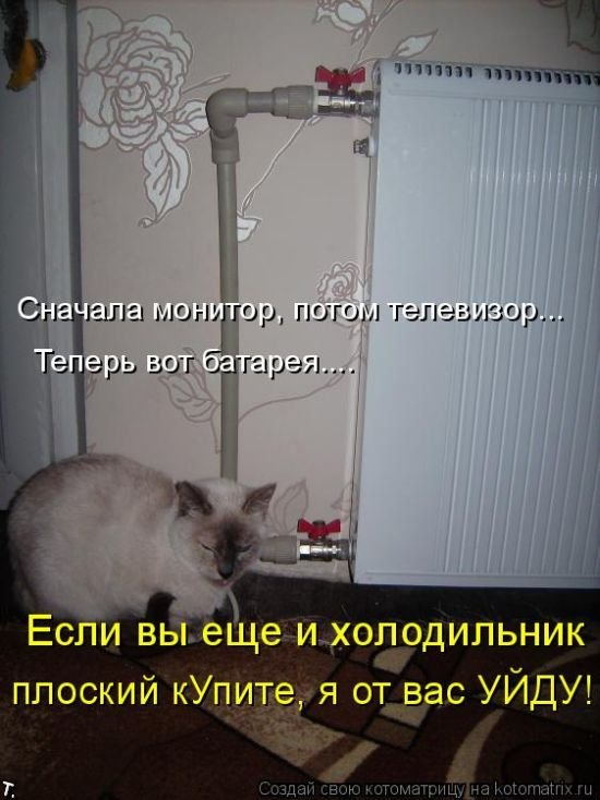 Котоматриця!)))) - Страница 2 Kotomatrix_13