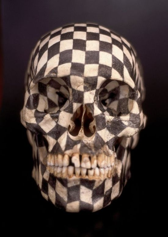 Концептуальное искусство Габриеля Оркозо (10 фото)