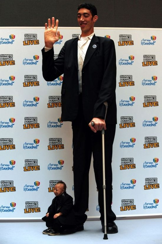 Самый высокий и самый маленький (10 фото)