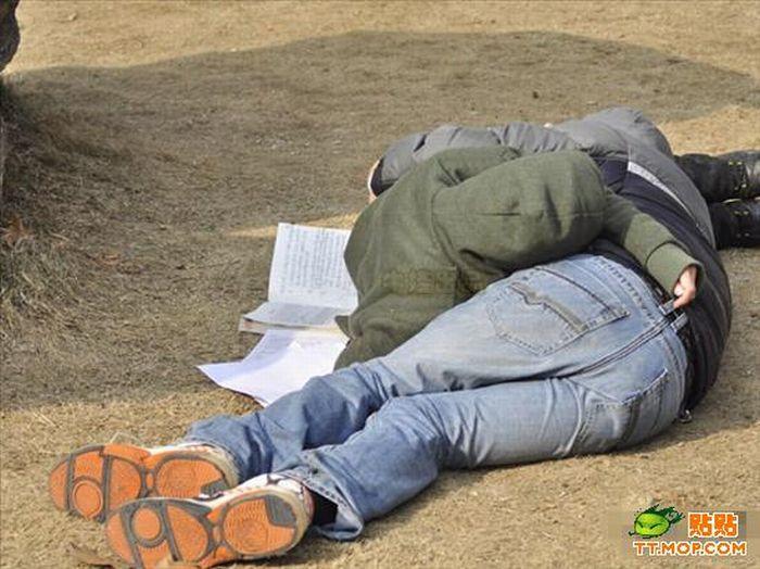 Бедные китайские студенты (7 фото)